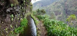 poluicao agua de rega