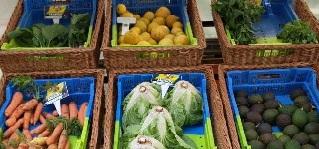 mercado agricultura biologica