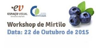 workshop mirtilo