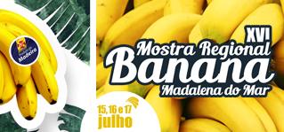 banana319x149
