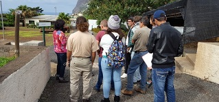 visita fruticultura capa
