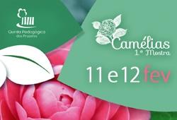 mostra das camelias capa