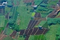 parcelario agricola capa