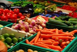agricultura biologica capa