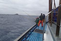 marcacao atum capa
