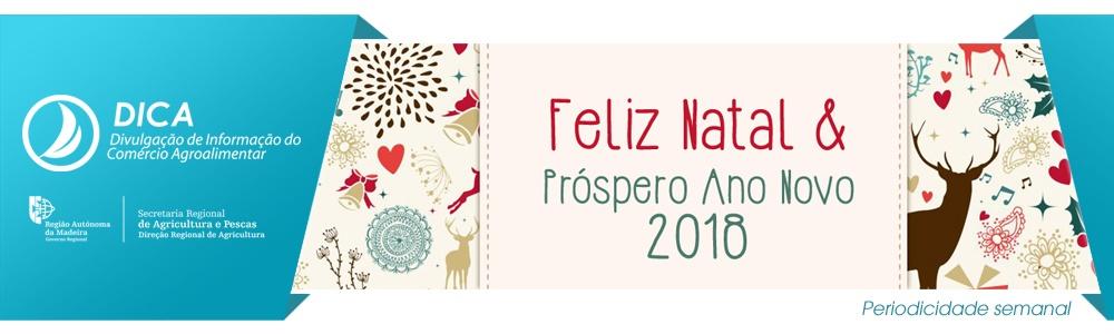 topo DICA natal2017