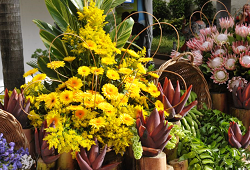 concurso arranjos florais