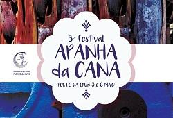 festival apanha da cana capa