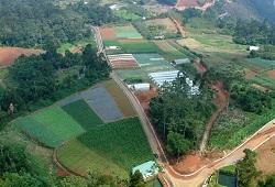 paisagem agricola