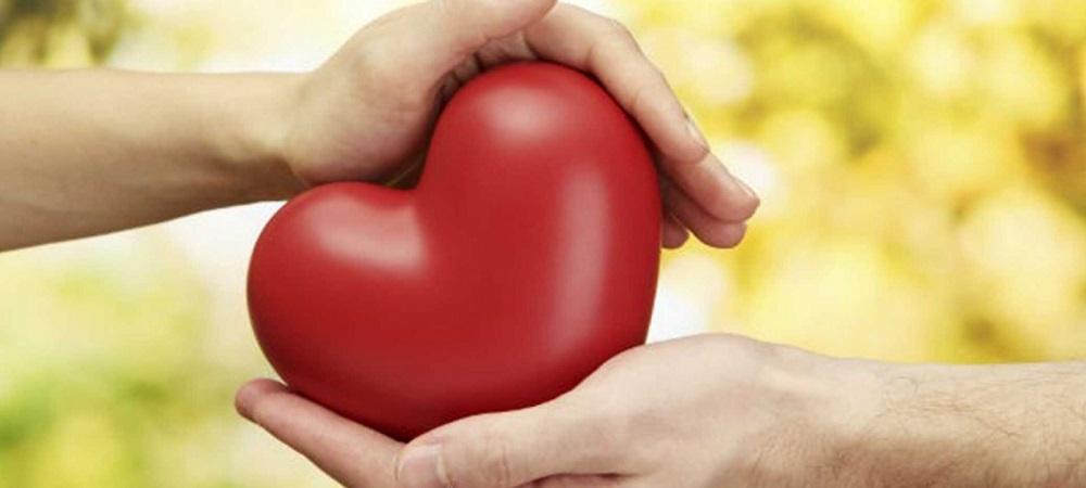 alimente bem o seu coração destaque