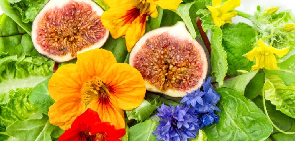 flores na alimentao1