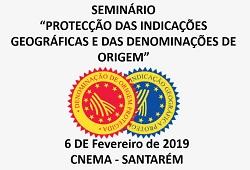 seminario IG e DO capa