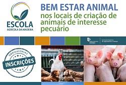 bem estar animal EAM fevereiro 2019 capa