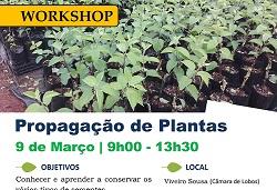 propagacao plantas 2019 capa