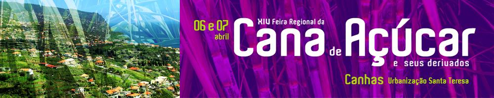 cana2019 DICA 1000
