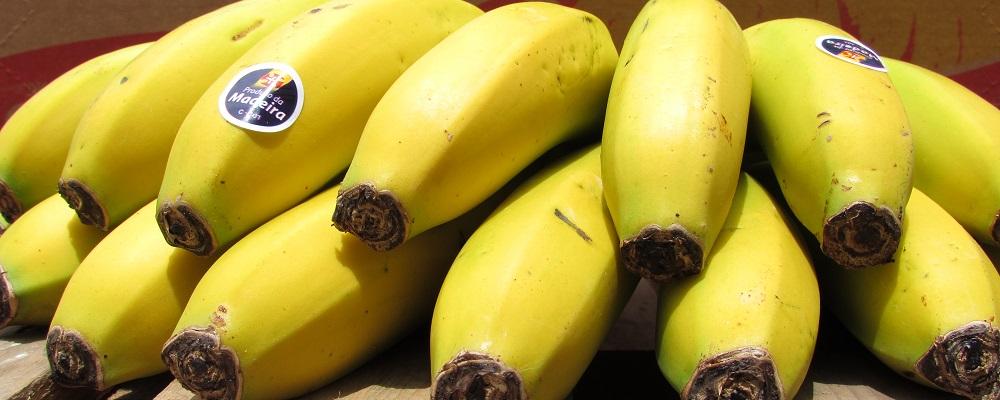 banana ERPASS destaque