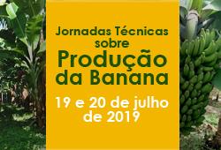 jornadas tecnicas banana capa