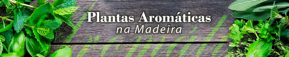 DICAs plantas aromaticas NA 200