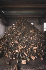 madeira poda 3