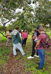 visita fruticultura 1