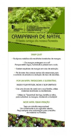 campanha natal florestas1