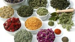 ervas aromaticas