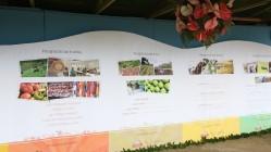 feira agropecuaria5