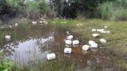 contaminacao agua 1