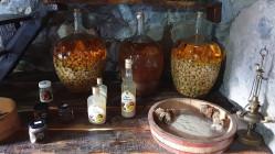 valorizacao da castanha 3 licor compota farinha