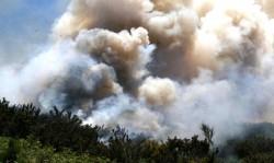 impactos incendios7