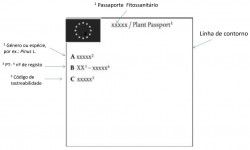 passaporte fitossanitario novo