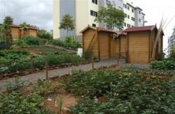 PF hortas urbanas2