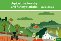 eurostat statistical book 2020 capa