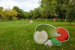 centro frutologia olivais lx