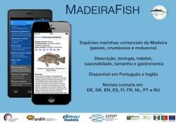 MadeiraFish1