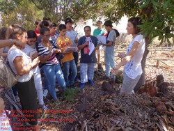compostagem liceu2