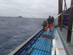 marcacao atum pesca