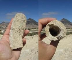 fig3 fonte da areia raiz fossil
