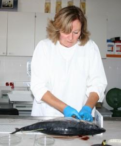 marcacao de atuns 2b