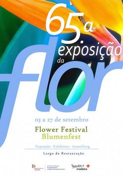 flor2020 DICAs 543