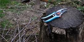 madeira poda 1