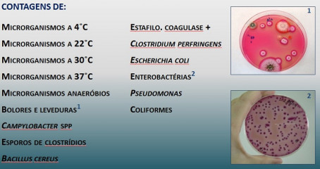 laboratorio microbiologia alimentar figura5