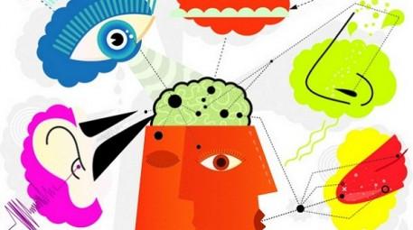 analise sensorial 3