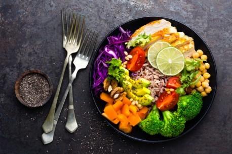 alimentacao e sistema imunitario 1