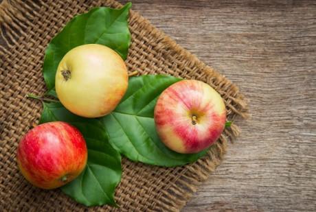 valor nutricional maca DICAs1