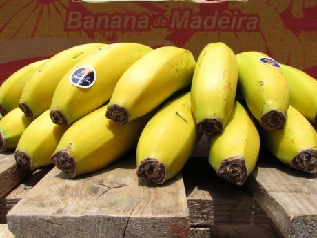 banana ERPASS