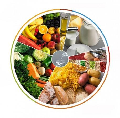 alimentacao e sistema imunitario roda dos alimentos