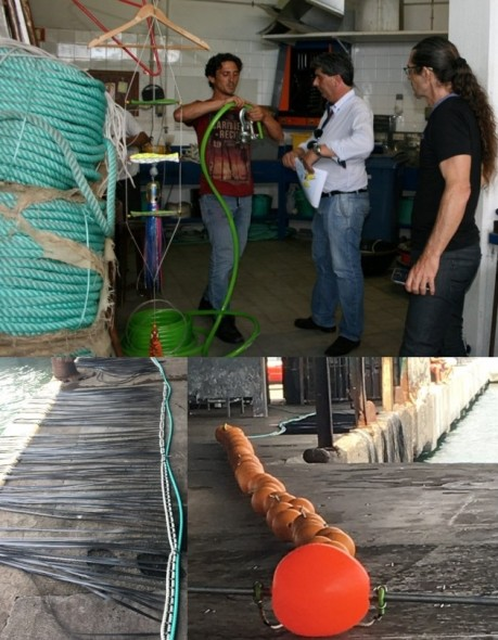 apresentacao projeto orfish figura2