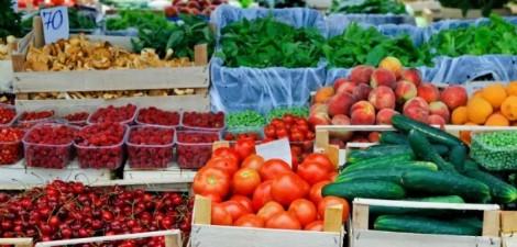 cuidados basicos colheita hortofruticolas 1