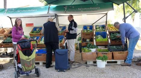 mercado agricultura biologica1